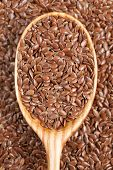 picture of flax plant  - Healthy little brown flax seeds super foods  in wooden spoon - JPG