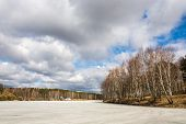 foto of birching  - Spring landscape with birch trees and a river covered with ice - JPG
