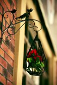 picture of caged  - Decoration of bright orange and green colorful flower in black cage - JPG