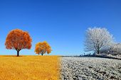 Autumn and winter landscape with blue sky. Concept of change season. poster