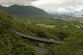 pic of afforestation  - view of Eastern Oahu as seen from the Pali lookout - JPG