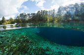 Split underwater view of the karst lake named Goluboye Ozero (Blue Lake) surrounded by forest. Maxim poster