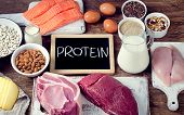 Постер, плакат: Best Foods High In Protein