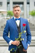 Last Bachelor On Earth. Valentines Day And Anniversary. Dating Services. How To Be Romantic. Romanti poster