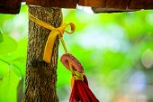 Rope Tied To Trees, Rope And Natural Background, Rope Tied Around A Tree poster