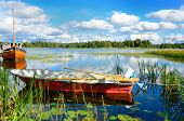 pic of lax  - A beautiful lake in Sweden in a summer sunny day - JPG