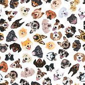 Cheerful Illustration With Dogs poster