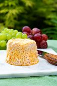 Langres, French Cow Milk Soft Cheese, Creamy And Crumbly With White Rind poster