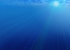 picture of under sea  - Background  - JPG