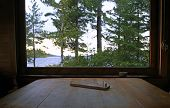picture of moosehead  - Peg board game set on rough wood table with large windows - JPG