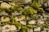 stock photo of stonewalled  - Dry masonry stonewall with moss closeup as background - JPG