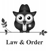 stock photo of law order  - Law and order USA version isolated on white background - JPG