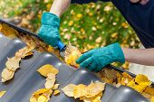 stock photo of gutter  - A man taking autumn leaves out of gutters - JPG