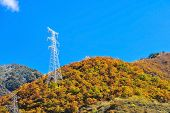 picture of utility pole  - High voltage poles in The Mountain at day light - JPG