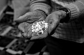 Old woman is holding medications in her hands pic.