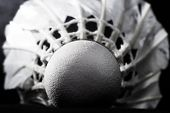 picture of shuttlecock  - white shuttlecock from goose feathers on a black background - JPG