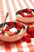stock photo of fruit bowl  - A bowl of delicious fresh fruit and Neapolitan ice cream served as a gourmet dessert after a hearty meal - JPG