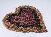 stock photo of pinto  - Kidney beans - JPG