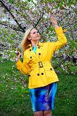 stock photo of sakura  - Young girl posing in the sakura garden in Vilnius - JPG