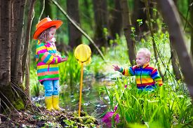 picture of baby frog  - Children playing outdoors. Two preschooler kids catching frog with colorful net. Little boy and girl fishing in a forest river in summer. Adventure kindergarten day trip into wild nature young explorer hiking and watching animals. ** Note: Soft Focus at  - JPG