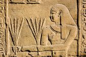 pic of horus  - Ancient Egyptian stone carving of a priest carrying stalks of wheat - JPG