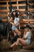 Постер, плакат: Two beautiful girls blonde and brunette with country look indoors shot in stable rustic style