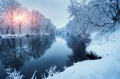 Winter Forest On The River At Sunset. Colorful Landscape With Snowy Trees poster