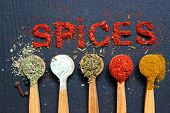 The Word Spice Is Written On A Black Background. Various Spices Ground Turmeric Pepper Ginger Cinnam poster