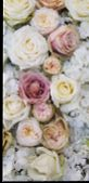 Background Image Of Flowers. White Fresh Pastel Roses. Pink And White Roses And Hydrangea. Backgroun poster