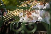 Jazz musicians playing the trombone - Beautiful music / Jazz mood Concept poster