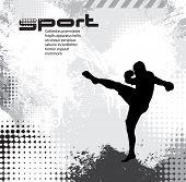 Sport. Karate illustartion