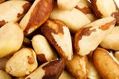 foto of brazil nut  - Close up of the Brazil nuts  - JPG