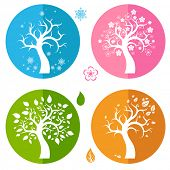 Set of icons with four trees
