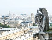 image of gargoyles  - Stone demon gargoyle with city of Paris on background - JPG