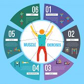 stock photo of shoulder muscle  - Workout sport and fitness training muscle exercises infographic vector illustration - JPG