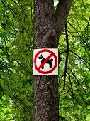 stock photo of dog poop  - Sign prohibiting dog walking in a botanical garden  - JPG