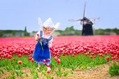 Постер, плакат: Little Girl In A National Dutch Costume In Tulips Field With Windmill