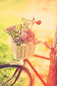 stock photo of wander  - vintage bicycle with flowers at outdoor - JPG
