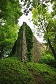 picture of old stone fence  - old stone wall of castle with green moss - JPG
