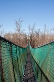stock photo of tibetan  - Tibetan bridge in the wildlife park of Ticino Lombardy - JPG