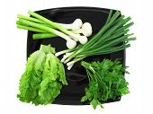 stock photo of bine  - Vegetable - JPG