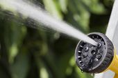 stock photo of water jet  - Jet of water rises from the tip of device of irrigation of garden at the sunshine on background of green plants - JPG