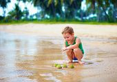 picture of echinoderms  - cute kid boy have found a group of green sea urchins on sandy beach - JPG