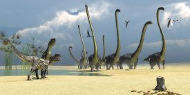 picture of predator  - Three Dorygnathus flying reptiles watch as two Allosaurus predators prepare for an attack on a herd of Omeisaurus dinosaurs - JPG