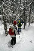 White Parka, Snowshoe Hikers