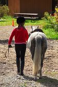 foto of farm animals  - young girl leading her pony back to the stable - JPG