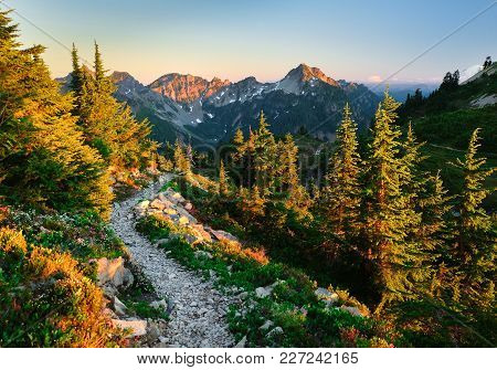 The Beautiful Pacific Crest Trail