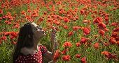 Drug, Opium, Narcotics, Carelessness. Summer, Spring, Poppy Flower. Opium Poppy, Youth, Freshness, E poster