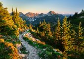 The Beautiful Pacific Crest Trail Near Snoqualmie Pass. Trail Alpine Lakes Wilderness, Cascade Mount poster