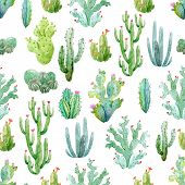 Beautiful Vector Seamless Pattern With Hand Drawn Watercolor Cactuses poster